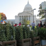 Dane County Farmer's Market Tops in America