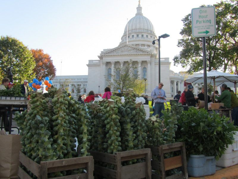 Dane County Farmer's Market Tops in Amer…