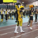 HAWKEYES & HERKY THE HAWK