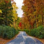Bloomington Tops Places to See Fall Foliage