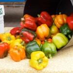 Historic Farmers Market Offers Taste of Tippecanoe County